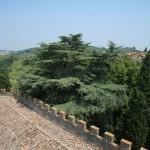 Castello il Palagio, interno
