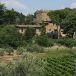 Castello il Palagio, veduta esterna